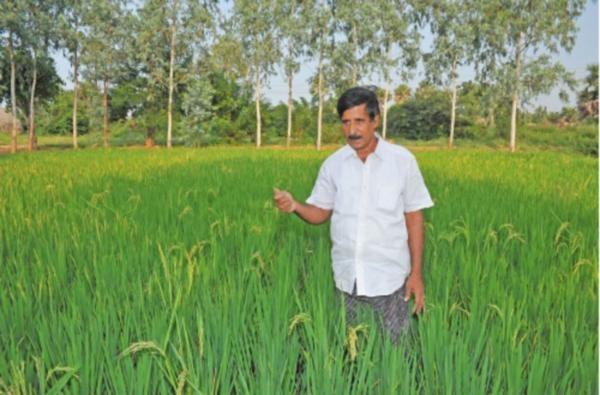 Telengana Farmer nagarathina naidu