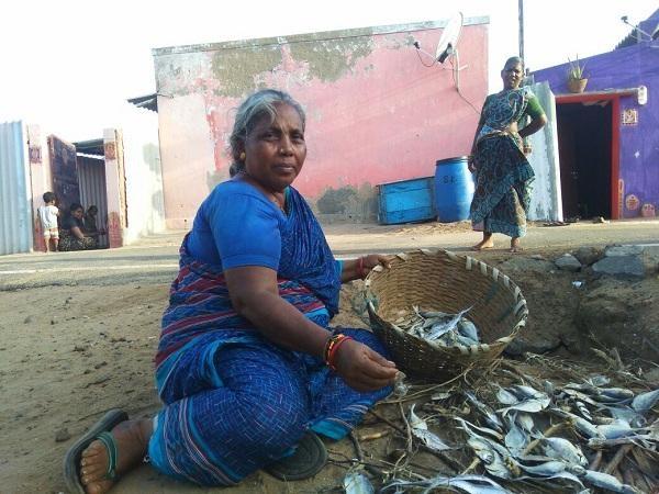 சூரியகாந்தி மீனவப் பெண்