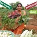 Expert woman farmer in mixed-crop cultivation... Rs.15,000/- profit per week per acre!