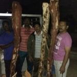 ஆந்திராவில் செம்மரக் கட்டைகள் பறிமுதல்..! கடத்தல்காரர்கள் தப்பி ஓட்டம்..!