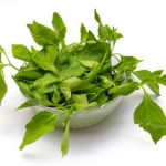 Agathi, Ponnangkkani, Manathakkali – the health assuring greens!