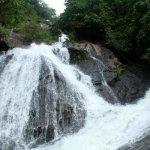 தொடர் வெள்ளப் பெருக்கு! கோவை குற்றாலம் மூன்றாவது நாளாக மூடல்