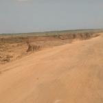 மண் கொள்ளையர்களால் காணாமல் போன சோழவரம் ஏரி!  #SpotVisit  #VikatanExclusive