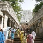 திருப்பதி பக்தர்களுக்கு மீண்டும் சனி, ஞாயிறுகளில் திவ்ய தரிசன அனுமதி!
