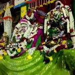 திருவாடானையில் சிநேகவல்லி அம்மனுக்கு திருக்கல்யாணம்!