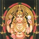 மன நோய்க்கு மருந்தாகும் சோட்டானிக்கரை பகவதி அம்மன்! #AadiSpecial