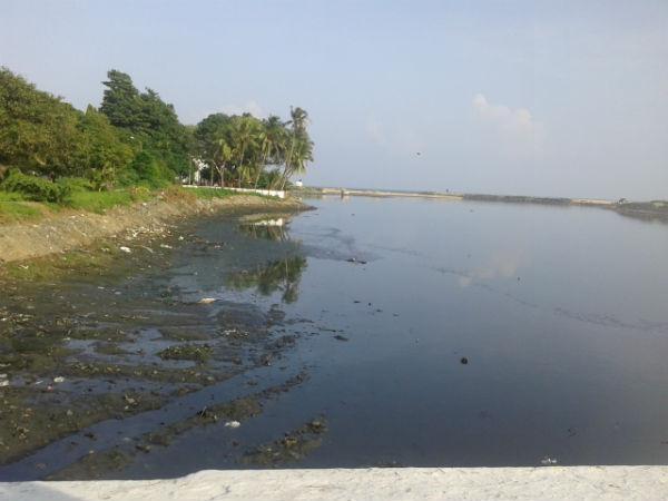 மாசடைந்த நதி