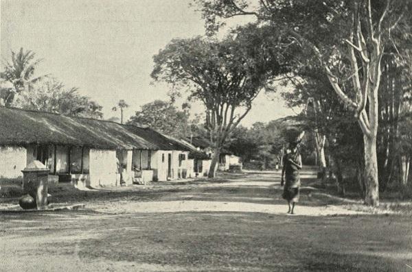 சேத்துப்பட்டு