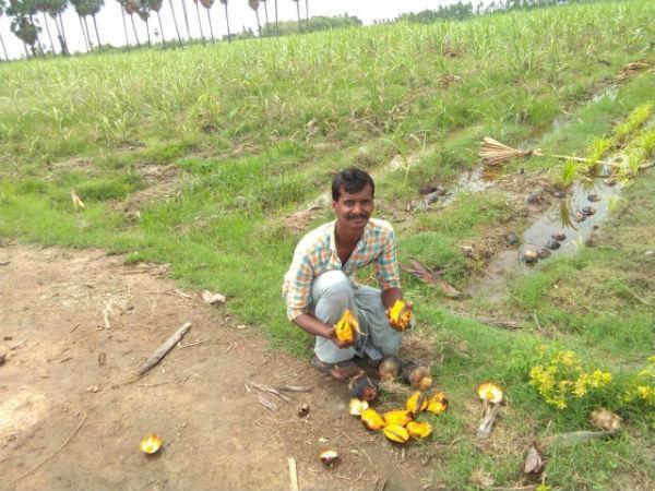 பிரேம் ஆனந்த்
