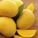 Can Diabetic patients eat Mango, Banana & Jack fruit?