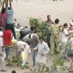 பஞ்சாப், ஹரியானா கலவரம் - 17 பேர் பலி