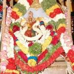 'சிவன் மீது கோபம் கொண்ட கருவூர் சித்தர்'... நெல்லையப்பர் கோயிலில் ஆவணி மூலத்திருவிழா!