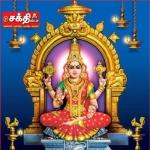 கலியுகத்தின் கண்கண்ட தெய்வம், கருணை வடிவானவள் கொல்லூர் மூகாம்பிகை! #AadiSpecial