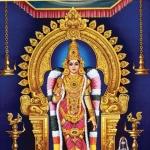 திருமண வரம் அருளும் நெல்லை காந்திமதி அம்மன்! #AadiSpecial