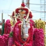 அநீதியை அழித்து தர்மத்தை நிலைநாட்டிய அன்னை குமரியம்மன்! #AadiSpecial
