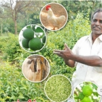 ₹3 Lacs from 4 Acres... Bonanza from Integrated Farming..!