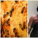 பாகுபலி சிவகாமி தேவிக்கும் ராணித்தேனீக்கும் என்ன சம்பந்தம்? #HoneyBeeDay