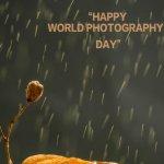 ஆகஸ்ட் 19-ம் தேதியான இன்று 'உலகப் புகைப்பட தினம்'