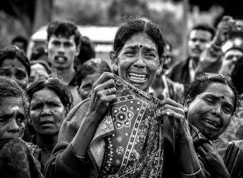 உலகப் புகைப்பட தினம்! விகடன் புகைப்படக் கலைஞர்களின் ஸ்பெஷல் விஷுவல்ஸ்  #VikatanPhotostory