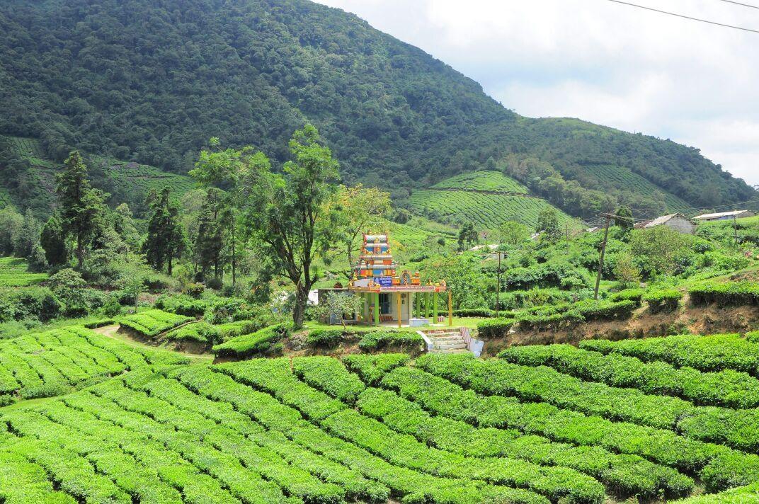 மேகமலை கௌமாரியம்மன்