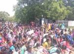 கல்லூரி மாணவர்கள் வகுப்புப் புறக்கணிப்பு... நீட் தேர்வுக்கு எதிராகத் தொடரும் போராட்டம்!
