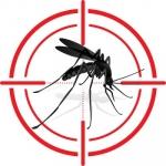 டெங்கு... அறிகுறிகள், பரிசோதனைகள், சிகிச்சைகள், தடுப்பு முறைகள்! #Dengue