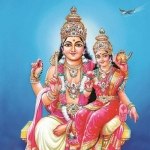 உங்களுக்கான சுக்கிர யோகம் எப்படி..? - ராசி வாரியாக ஒரு ஜோதிட அலசல் #Astrology