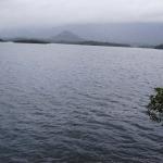 குமரி மாவட்ட அணைகளின் நீர்மட்டம் உயர்வு