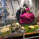தமிழன்னை சிலை முன் மருத்துவக் கருவிகளுக்கு வழிபாடு! ஆயுத பூஜையில் இது புதுமை