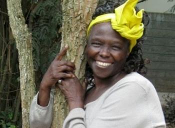"""""""மக்களாட்சி, அமைதி, சுற்றுச் சூழல்... இவை மூன்றுக்கும் தொடர்பில்லையா?"""" - மரங்களின் தாய் வங்காரி மாத்தாய் #WangariMaathaiMemories"""