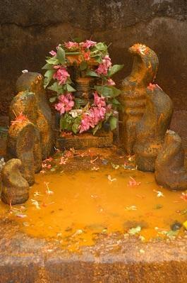 நாகதோஷம்