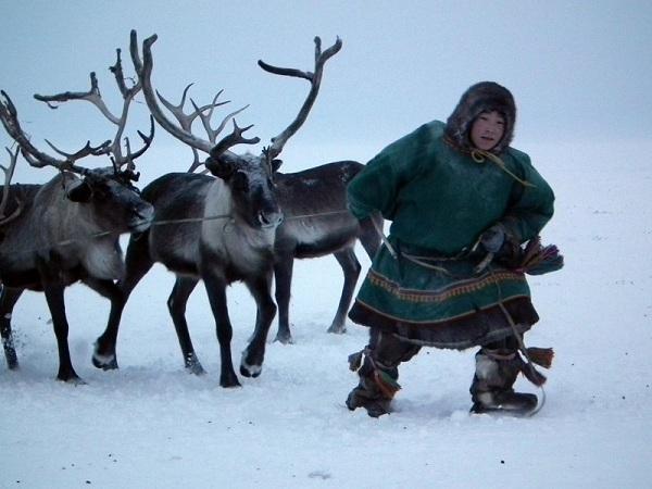 Arctic Children - Nenets