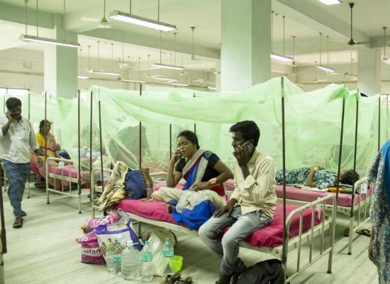dengue, டெங்கு