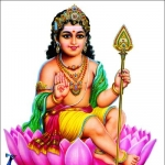 சக்திதரன், வேங்கைநாதன், காங்கேயன்... எம்பெருமான் முருகனின் 18 திருவடிவங்கள்! #KandhaSashtiViratham
