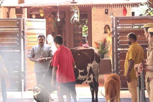 கோபூஜை - தினகரன் வீட்டில்...