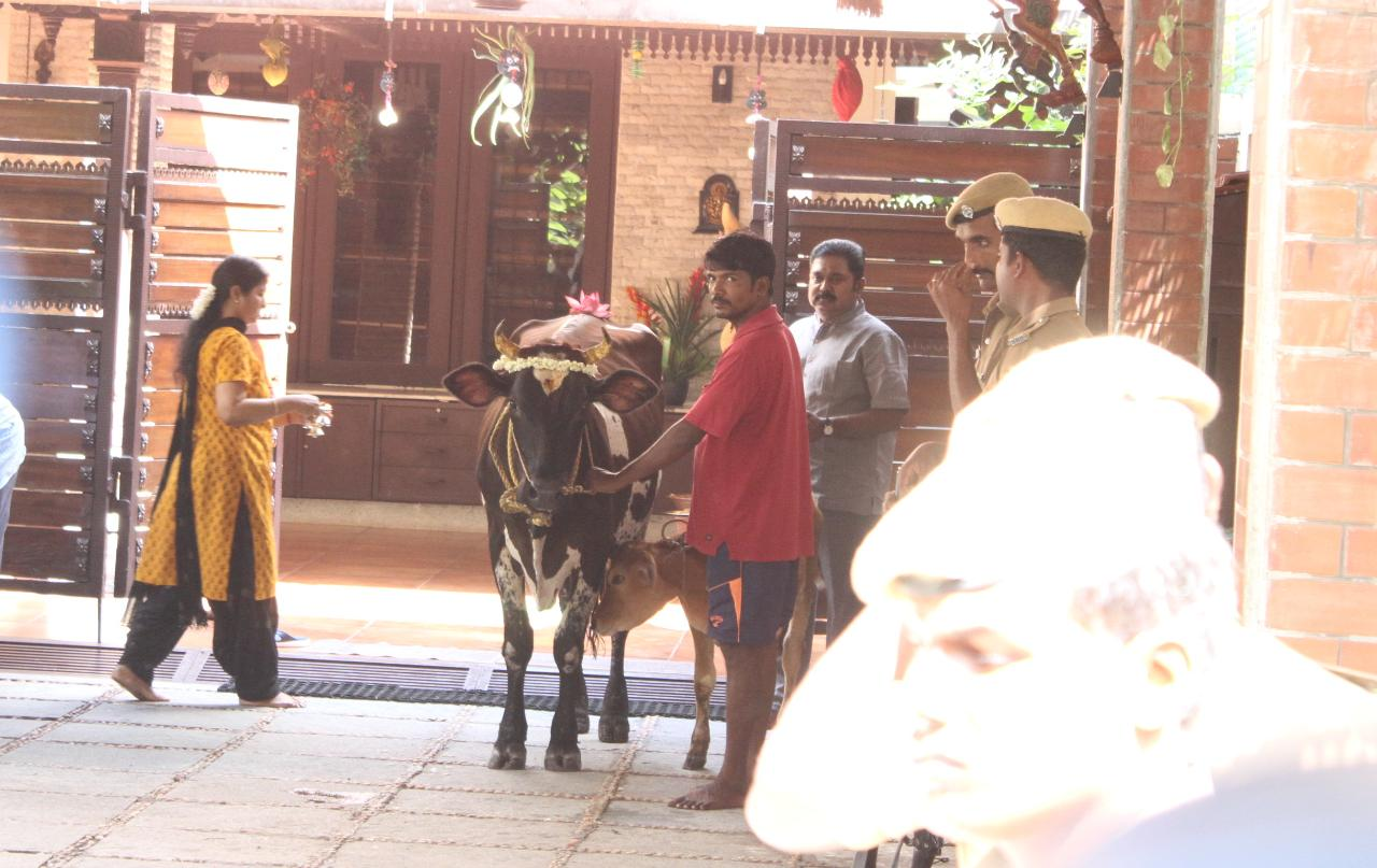 கோ பூசையில் தினகரன்