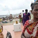 """""""போக்கிடம் இல்லாம கோவில்லயே தங்கி இருக்கோம்!"""" நல்லதண்ணி ஓடை மக்களின் துயரம் #ChennaiSouls #VikatanPhotoStory"""