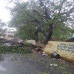 தீவிரம் ஆகிறது ஒகி புயல்...கனமழையால் தவிக்கும் குமரி மாவட்டம் #CycloneOckhi
