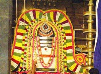 செல்வம், கல்வி, ஞானம் அருளும் 14 சிவ திருக்கோலங்கள், கோயில்கள்! #VikatanPhotoStory
