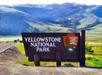 340 அருவிகள்... 300 வெப்ப நீரூற்றுகள்... 8987 சதுர கி.மீ-ல் ஒரு தேசியப் பூங்கா! #Yellowstone