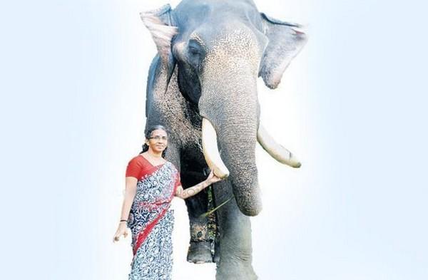 குட்டி சங்கரன் யானையுடன் ருக்மணி