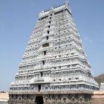 கார்த்திகை தீபத் திருநாளில் பொரி பொரித்து வழிபடுவது ஏன்? #Tiruvannamalai