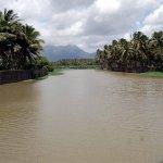 மழை காரணமாக குமரி மாவட்ட அணைகளில் நீர் அளவு கிடுகிடு உயர்வு!