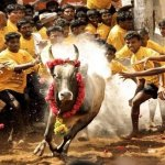 ட்விட்டரை அதிரவிட்ட #jallikattu ஹேஷ்டேக்!