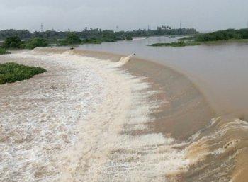 தொடர் மழை எதிரொலி: நிரம்பி வழியும் நெல்லை மாவட்ட அணைகள்!