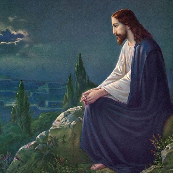 நல்ல நிலத்தில் விழும் விதைகள் தப்பாமல் முளைக்கும்! #BibleStories