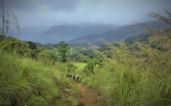 அகஸ்தியர் மலை ட்ரெக்கிங்