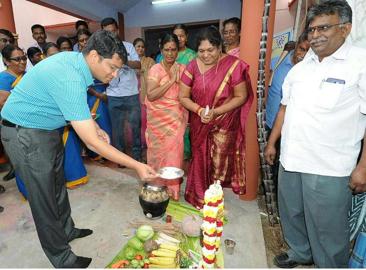 pongal festival celebrated in thoothukudi