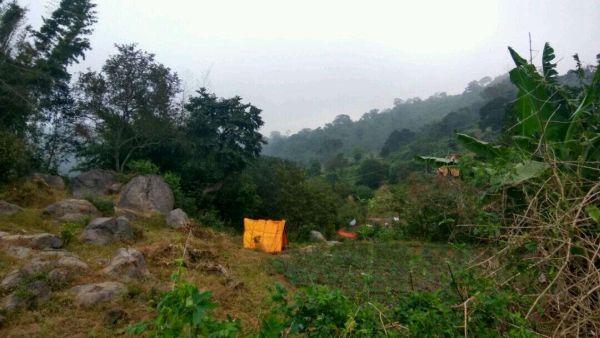 ஜவ்வாது மலை