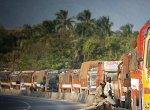 `கோவை பெயரைக்கேட்டாலே கொள்ளையர்கள் அதிரணும்'- களத்தில் இறங்கியது போலீஸ்